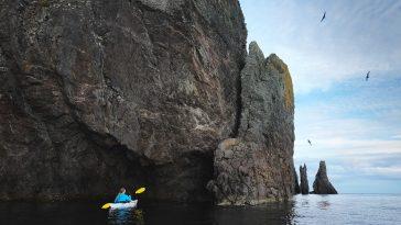 Trinity Bay, Newfoundland: A Snapshot